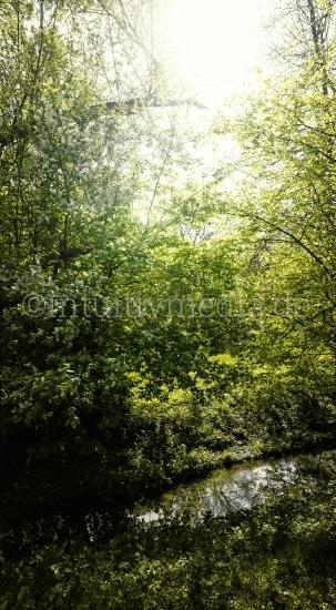 Grünes Bild mit Laub
