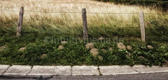 Zaun am Feldrand