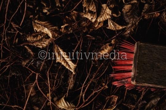 Roter Gartenbesen mit Laub