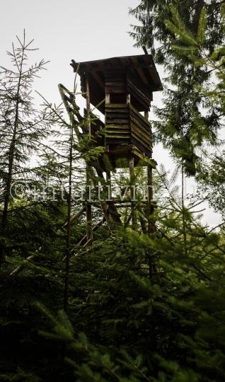 Jagdsitz im Wald