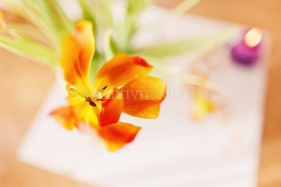 Tulpen mit Kerzen Dekoration