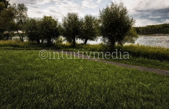 Weg am Rheinufer