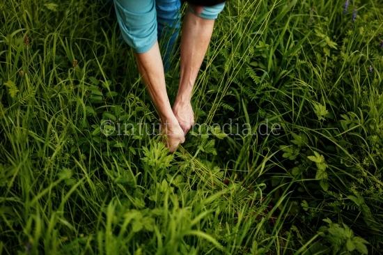 Arme einer Frau mit Gras