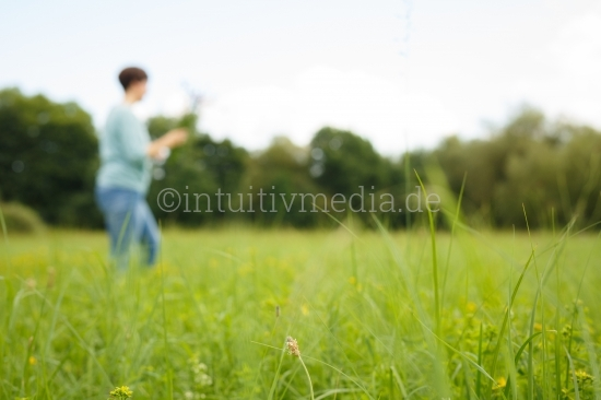 Frau pflückt Heilkräuter auf Sommerwiese