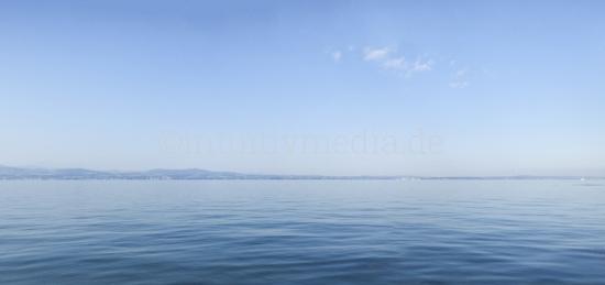 See Panorama
