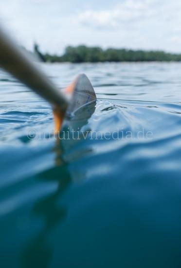Ruder im Wasser