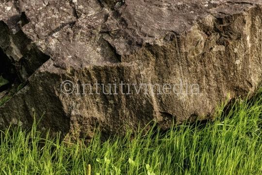 Felsen mit Grass
