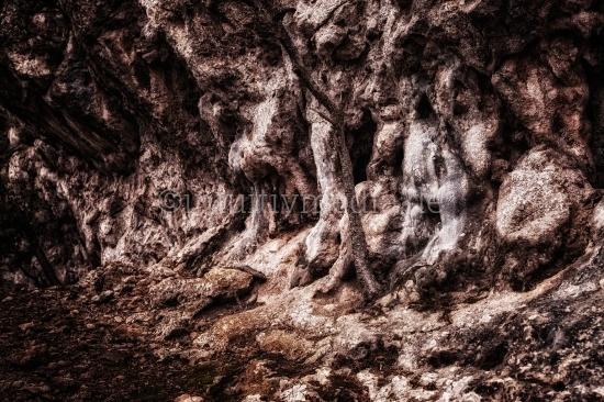 Felswand einer Grotte