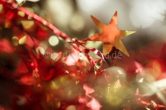 Weihnachtsgestecke - Decorative Sterne