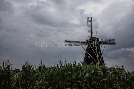 Holländische Landschaft mit Windmühle