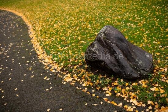 Stein am Wegesrand