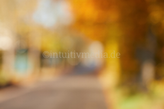 Moderne & unscharf - Hintergrundbild Herbst