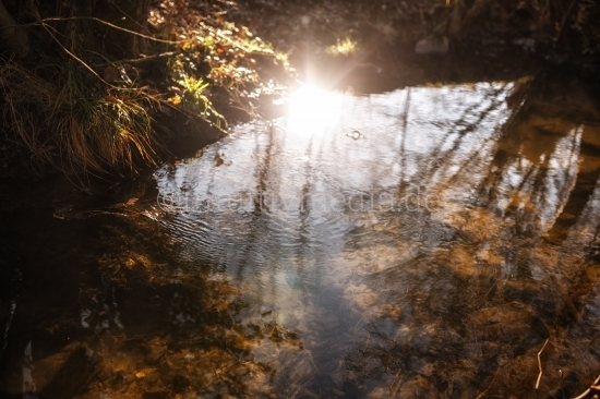 Spiegelungen im Wasser