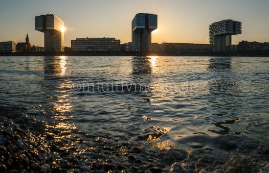 Krahnhäuser Panorama Rheinauhafen mit Rhein