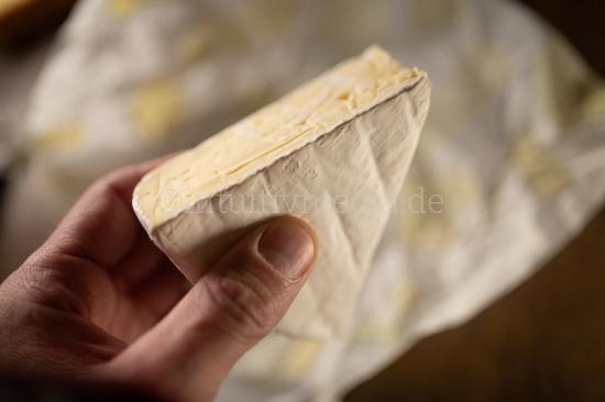 Piece of cheese closeup
