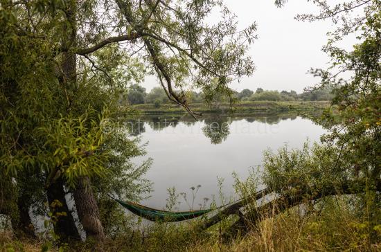 Hammock near river maas landscape