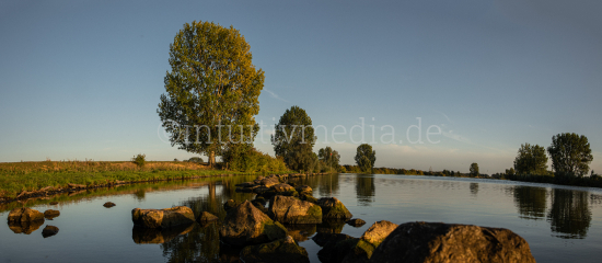 River Maas countryside