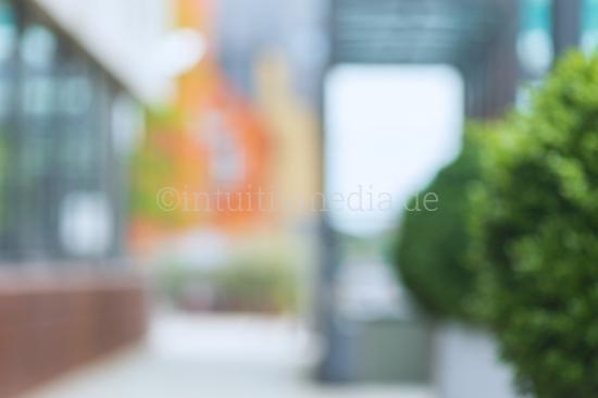 Portrait Blurred Background