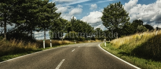 Landstrasse mit Bäumen