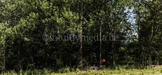 Kleiner Junge an den Bäumen