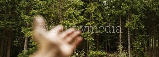 Hand unscharf Zeigt Wald