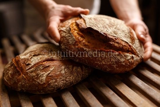 Bio Brot Backen