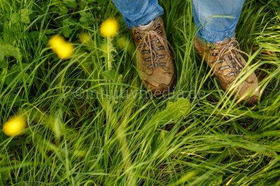 Wanderschuhe auf grüner Wiese