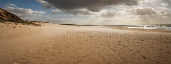 Wilder Strand in der Algavre