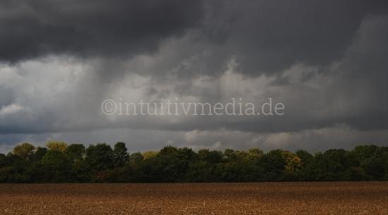 Feld am Waldrand - Regenwetter