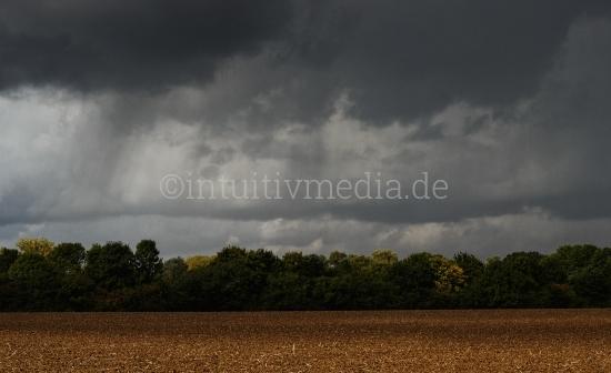 Feld am Waldrand im Herbst