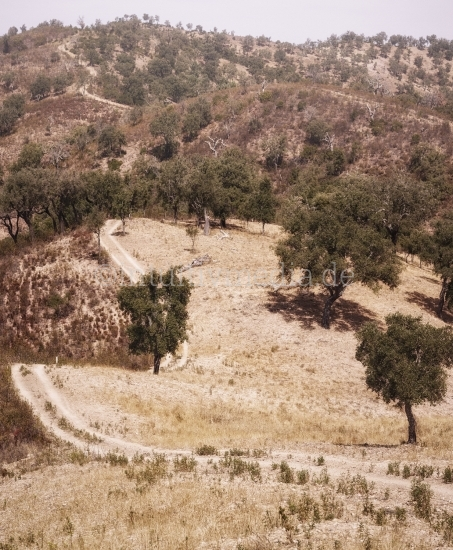 Hügel in Portugal
