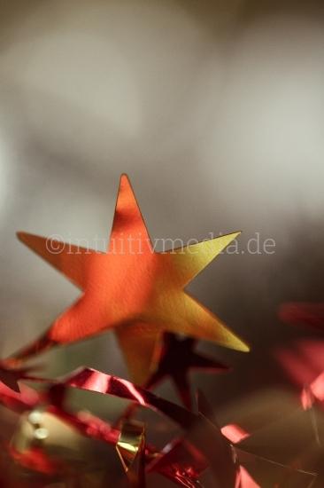 Weihnachtsgestecke - Sterne