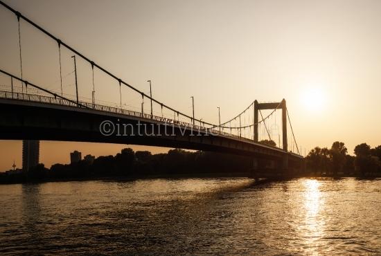 Mühlheimer Brücke im Abendlicht