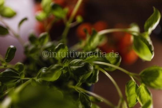 Tomaten closeups mit Kräutern
